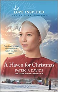A Haven for Christmas (North Country Amish #4)