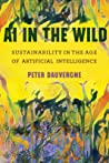 AI in the Wild: Sustainability in the Age of Artificial Intelligence