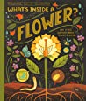 What's Inside a Flower?: And Other Questions about Science & Nature