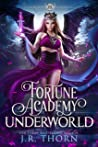 Fortune Academy Underworld: Book Four