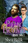 Puzzling Encounters (Mystic Pines, #3)