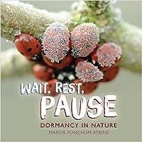 Wait, Rest, Pause