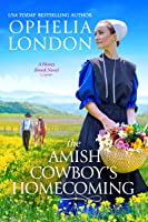 The Amish Cowboy's Homecoming (Honey Brook Book 2)