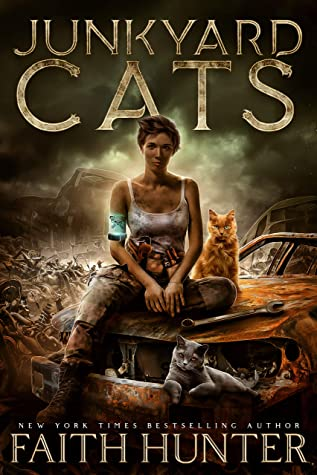 Image result for old junk yard cat