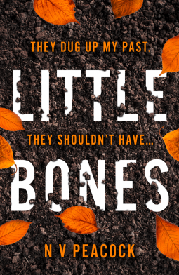 Little Bones by N.V. Peacock