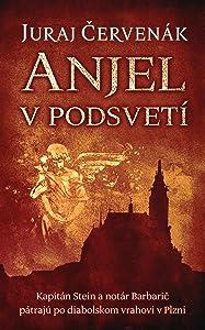 Anjel v podsvetí (Stein a Barbarič, #7)