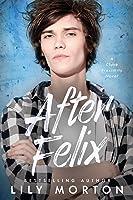 After Felix (Close Proximity)