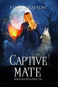 Captive Mate (Mismatched Mates #2)