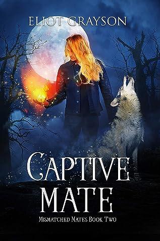 Captive Mate (Mismatched Mates #2)