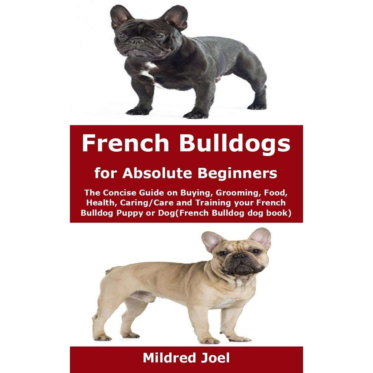 French Bulldogs For Absolute Beginners The Concise Guide On Buying Grooming Food Health Caring Care And Training Your French Bulldog Puppy Or Dog By Mildred Joel