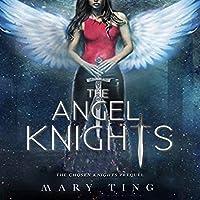 The Angel Knights (Secret Knights, #0.5)