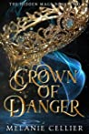 Crown of Danger (The Hidden Mage, #2)