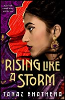 Rising Like a Storm (The Wrath of Ambar, #2)