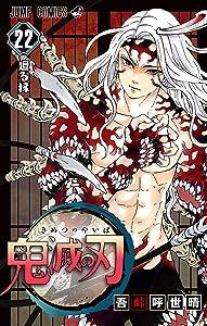 鬼滅の刃 22 [Kimetsu no Yaiba 22] (Demon Slayer: Kimetsu no Yaiba, #22)