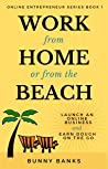 Work from Home or from the Beach (Online Entrepreneur, #1)