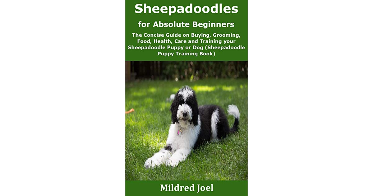 Sheepadoodles For Absolute Beginners The Concise Guide On Buying Grooming Food Health Care And Training Your Sheepadoodle Puppy Or Dog By Mildred Joel