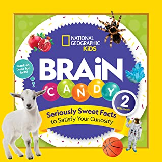 Brain Candy 2 by Kelly Hargrave