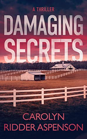 Damaging Secrets (Rachel Ryder, #1)