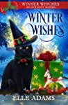 Winter Wishes  (Winter Witches of Holiday Haven, #4)