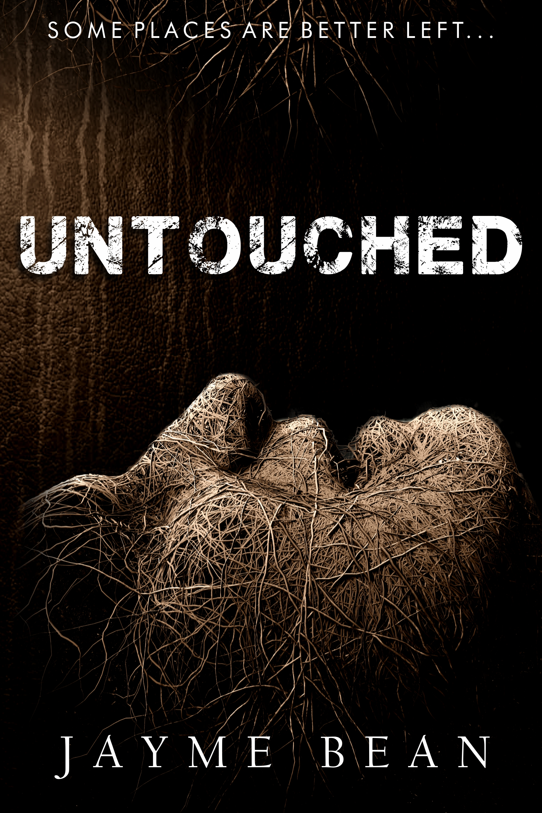 Untouched by Jayme Bean