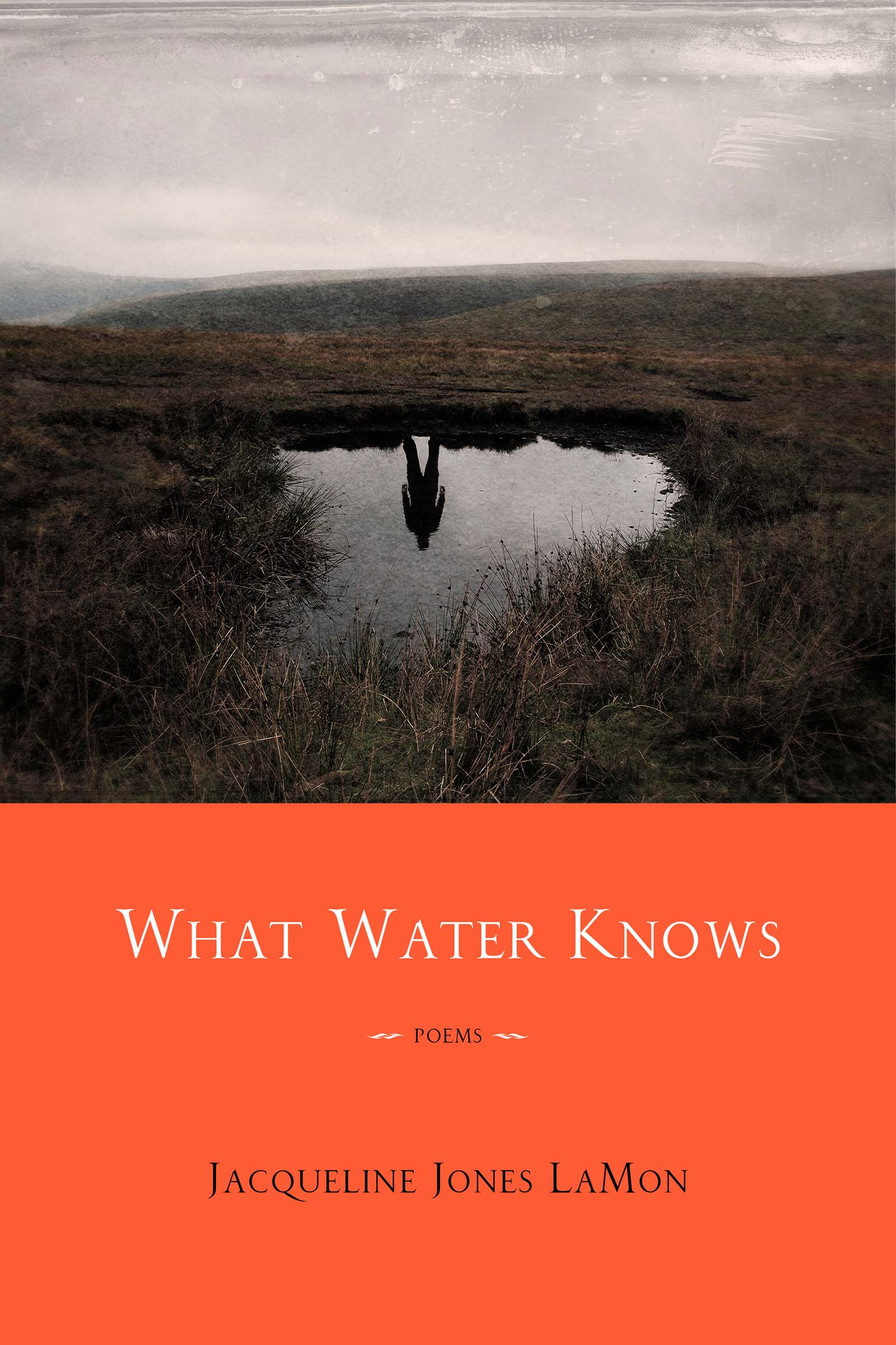 What Water Knows: Poems