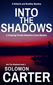 Into The Shadows: A Gripping Private Detective Mystery (Into The Shadows Private Investigator Crime Thriller Series Book 1)