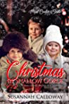 Christmas in Shallow Gorge (Mail Order Brides of Colorado)