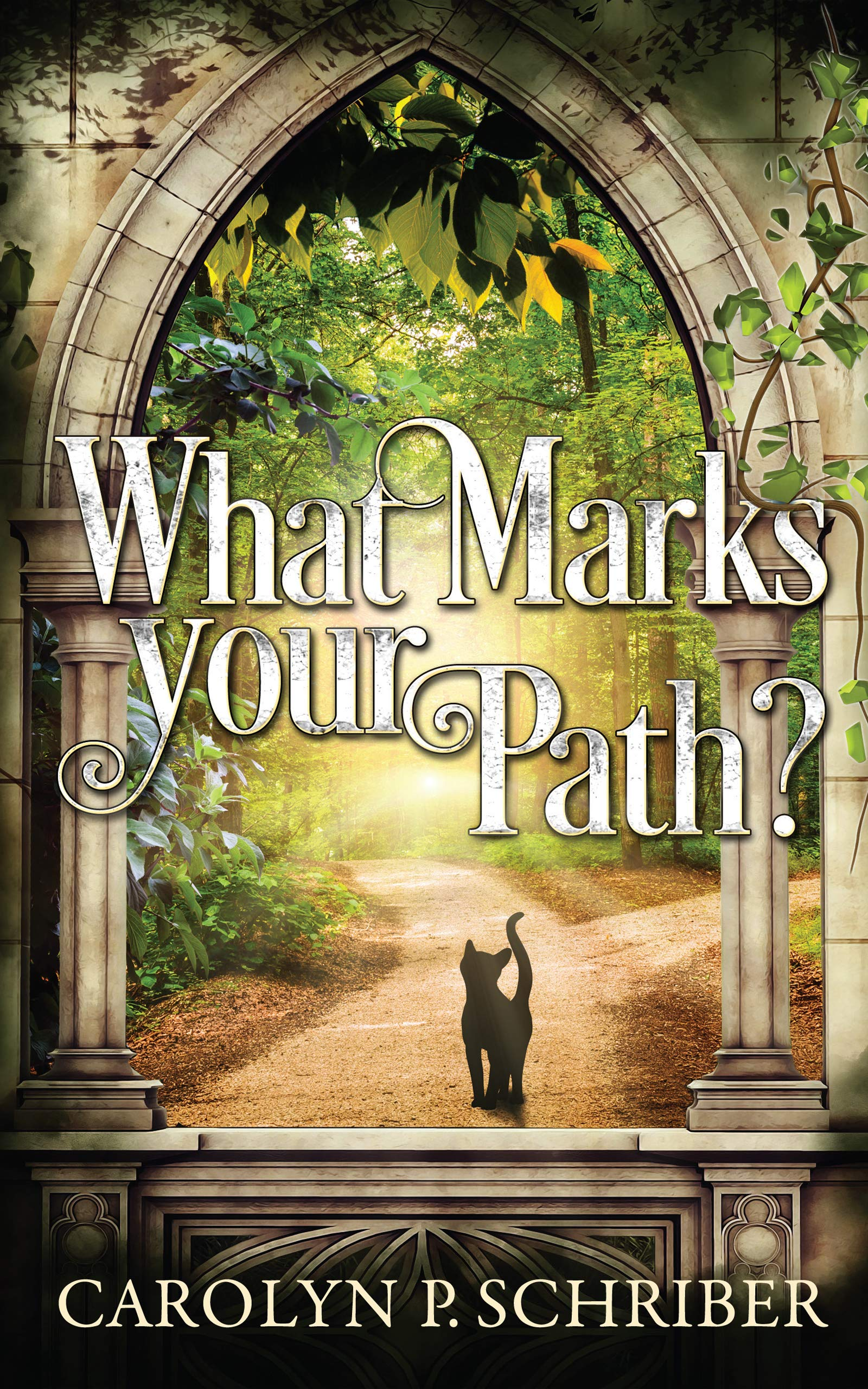 What Marks Your Path? (Smoky Mountain Mysteries Book 2) Carolyn P. Schriber