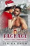 His Big Package (Mistletoe Montana #4)
