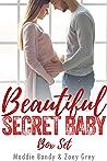 Beautiful Secret Baby Romance Series
