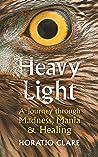 Heavy Light: A Jo...