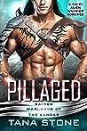 Pillaged (Raider Warlords of the Vandar #3)