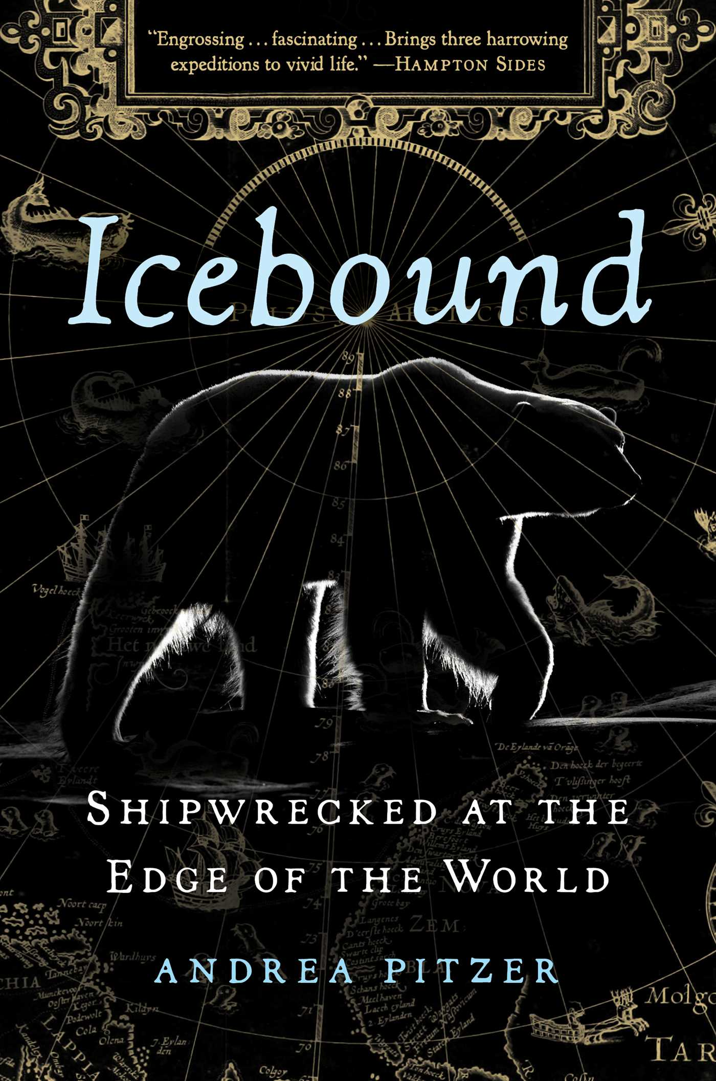 Icebound: Shipwrecked at the Edge of the World