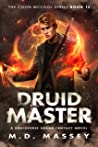 Druid Master (Colin McCool #12)
