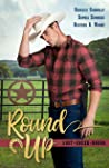Round Up (Lost Creek Rodeo #1)