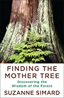 Finding the Mother Tree: Discovering How the Forest Is Wired for Intelligence and Healing