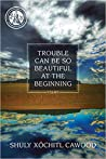 Trouble Can Be So Beautiful at the Beginning: Poems