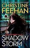 Shadow Storm (Shadow Riders #6)