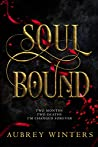 Soul Bound (The Shadow World #2)