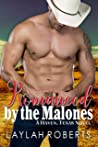 Romanced by the Malones (Haven, Texas #8)