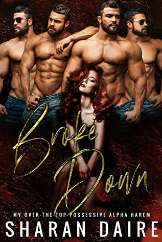Broke Down by Sharan Daire