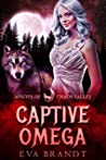 Captive Omega (Wolves of Chaos Valley)