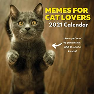 Memes For Cat Lovers 2021 Calendar: Funny Gifts for Owners, Stocking Fillers, Stuffers, Men, Women, Girls, Boys, Teens, Kids Birthday or Christmas Presents