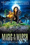 Magic in the Marsh (Academy of Necessary Magic Book 2)