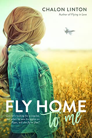 Fly Home to Me