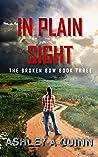 In Plain Sight (Broken Bow Book #3)