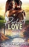 Perfect Love (Mason Creek #3)