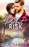 Perfect Risk (Mason Creek #1)