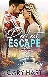 Perfect Escape (Mason Creek, #6)