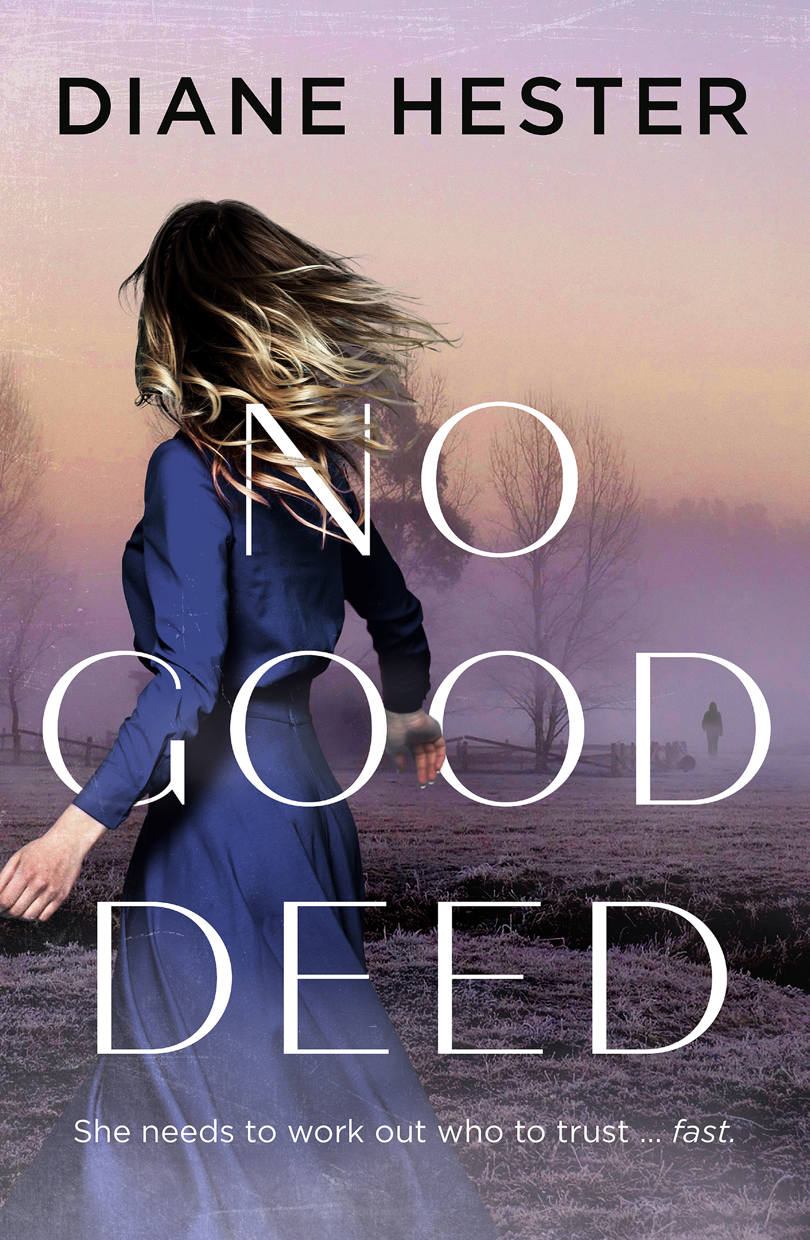 No Good Deed by Diane Hester